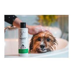 TraumaPet® shampoo Ag - šampón